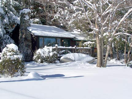 Algonquin Cottage in winter