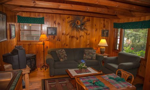 Noonmark Cottage living room -Harbor Hill at Saranac Lake