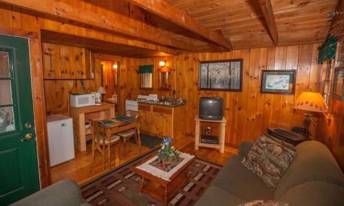 Noonmark Cottage Sitting Room -Harbor Hill at Saranac Lake
